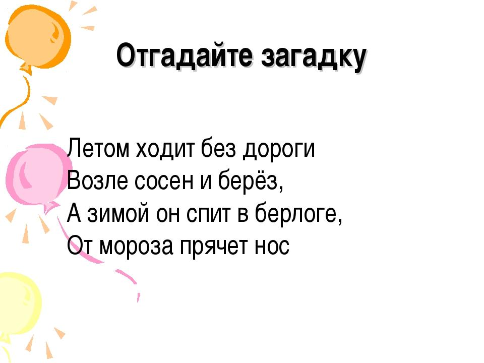 Отгадайте загадку Летом ходит без дороги Возле сосен и берёз, А зимой он спит...