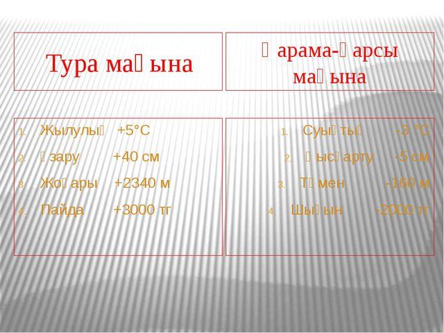 Тура мағына Қарама-қарсы мағына Жылулық +5°С Ұзару +40 см Жоғары +2340 м Пай...