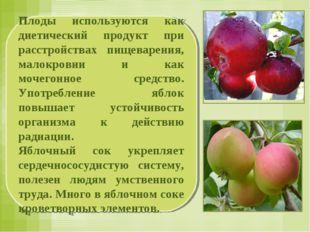 Плоды используются как диетический продукт при расстройствах пищеварения, мал