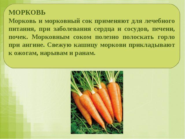 МОРКОВЬ Морковь и морковный сок применяют для лечебного питания, при заболева...