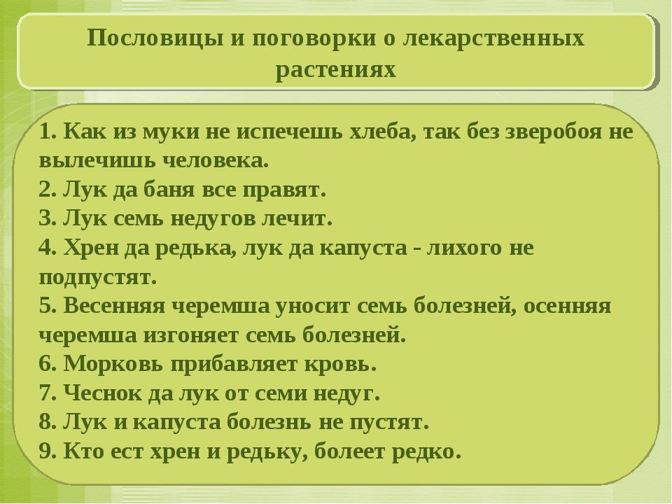 1. Как из муки не испечешь хлеба, так без зверобоя не вылечишь человека. 2....