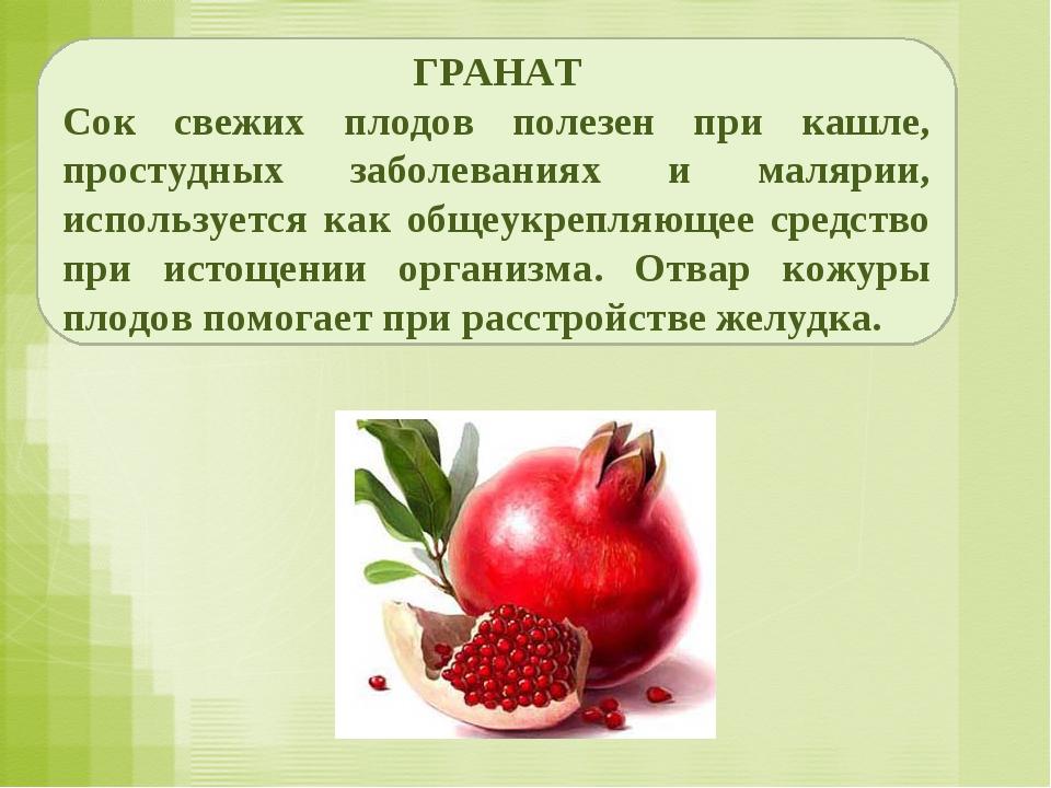 ГРАНАТ Сок свежих плодов полезен при кашле, простудных заболеваниях и малярии...