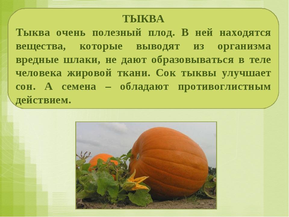 ТЫКВА Тыква очень полезный плод. В ней находятся вещества, которые выводят из...