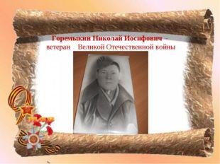 Горемыкин Николай Иосифович - ветеран Великой Отечественной войны
