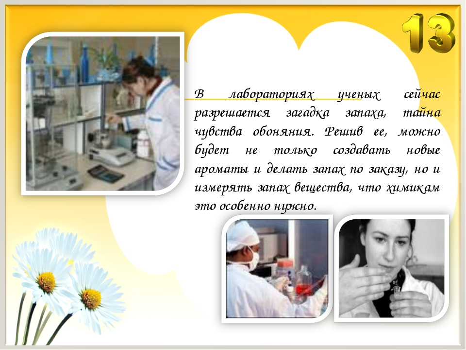 В лабораториях ученых сейчас разрешается загадка запаха, тайна чувства обонян...