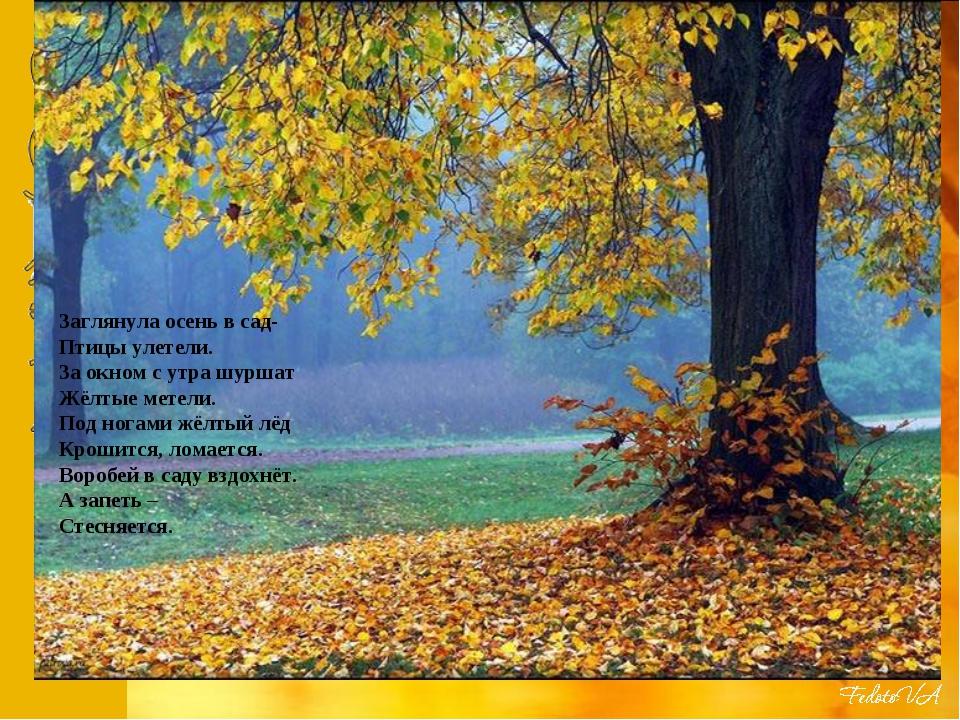 Заглянула осень в сад- Птицы улетели. За окном с утра шуршат Жёлтые метели....