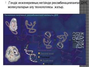 .Гендік инженерияның негізінде рекомбинацияланған ДНҚ молекулаларын алу техно