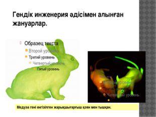 Гендік инженерия әдісімен алынған жануарлар. Медуза гені енгізілген жарықшыға