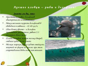 Лучшие пловцы – рыбы и дельфины! Знаете ли вы, что: Аристотель назвал дельфин