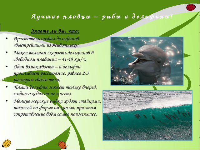 Лучшие пловцы – рыбы и дельфины! Знаете ли вы, что: Аристотель назвал дельфин...