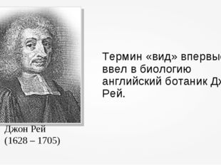 Термин «вид» впервые ввел в биологию английский ботаник Джон Рей. Джон Рей (1
