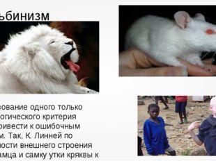 Альбинизм Использование одного только морфологического критерия можетпривести
