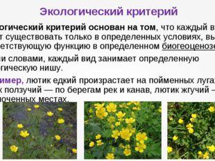 Экологический критерий Экологический критерийоснован на том, что каждый вид
