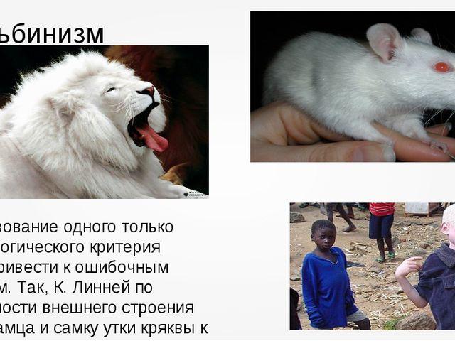 Альбинизм Использование одного только морфологического критерия можетпривести...