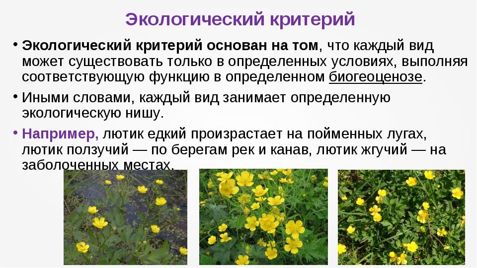 Экологический критерий Экологический критерийоснован на том, что каждый вид...
