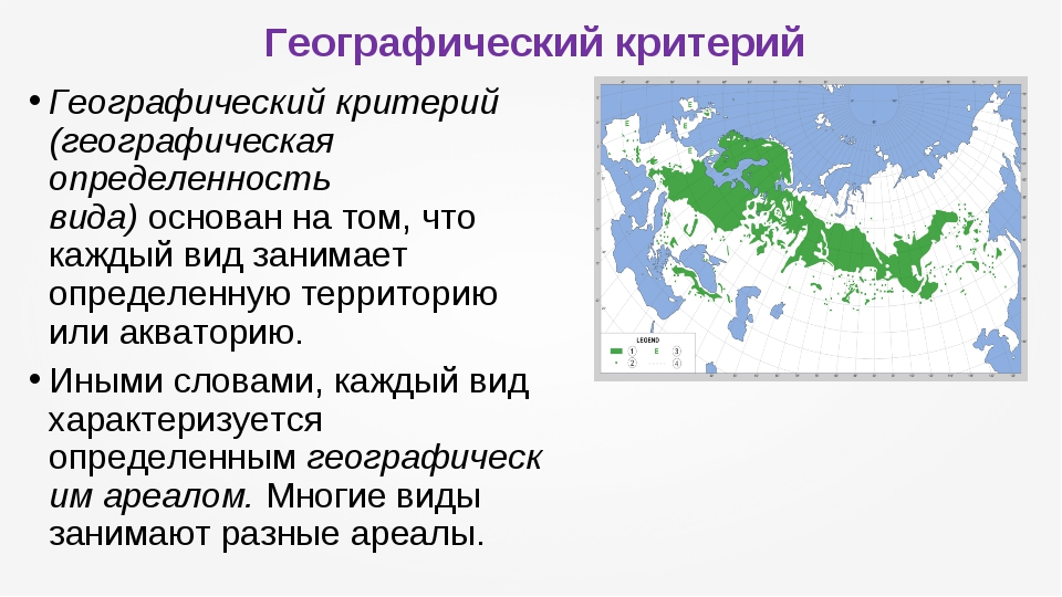 Географический критерий Географический критерий (географическая определенност...