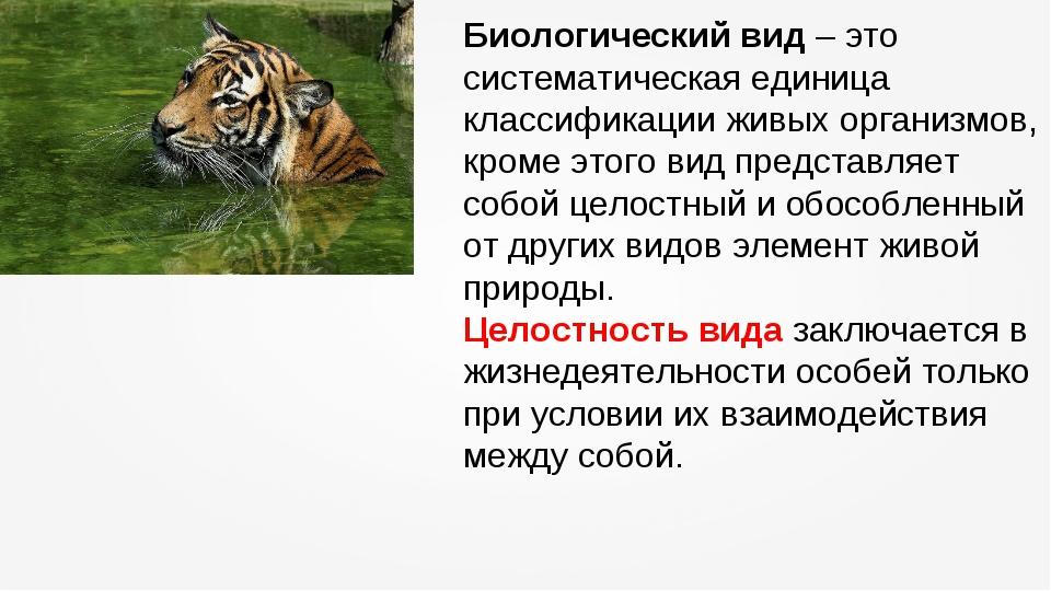Биологический вид – это систематическая единица классификации живых организмо...