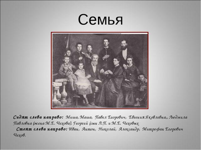 Семья Сидят слева направо: Миша, Маша, Павел Егорович, Евгения Яковлевна,, Лю...