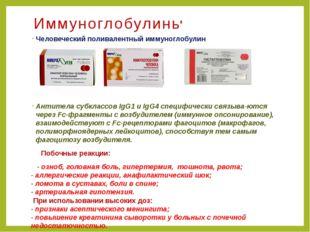 Иммуноглобулины Человеческий поливалентный иммуноглобулин Антитела субклассов