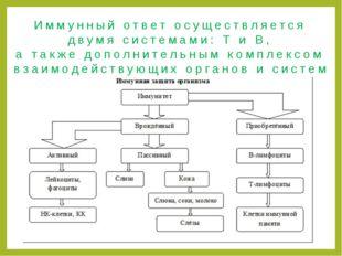 Иммунный ответ осуществляется двумя системами: Т и В, а также дополнительным