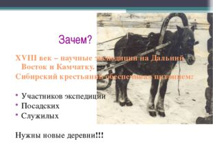 Зачем? XVIII век – научные экспедиции на Дальний Восток и Камчатку. Сибирски