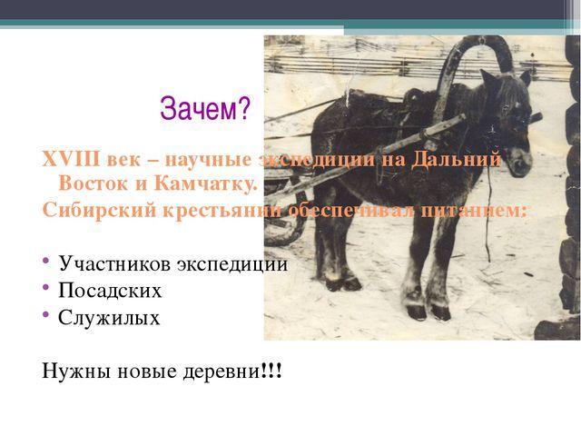 Зачем? XVIII век – научные экспедиции на Дальний Восток и Камчатку. Сибирски...