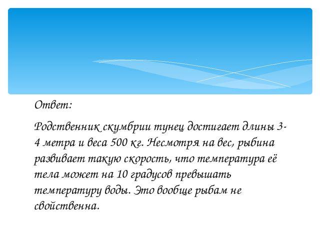 Ответ: Родственник скумбрии тунец достигает длины 3-4 метра и веса 500 кг. Не...