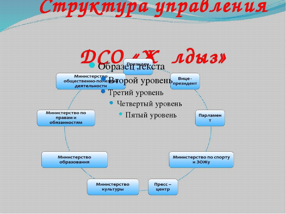 Структура управления ДСО «Жұлдыз»