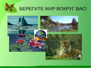 БЕРЕГИТЕ МИР ВОКРУГ ВАС! Антонина Сергеевна Матвиенко