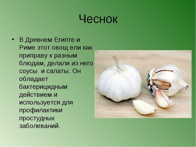 Чеснок В Древнем Египте и Риме этот овощ ели как приправу к разным блюдам, де...