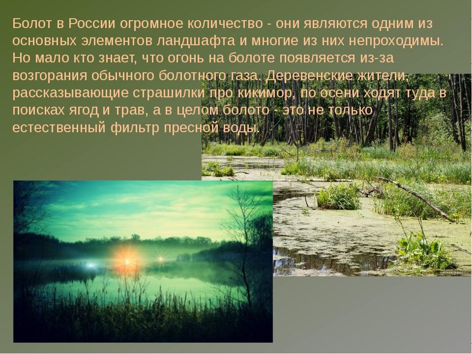 машины болота россии сообщение папой назвал