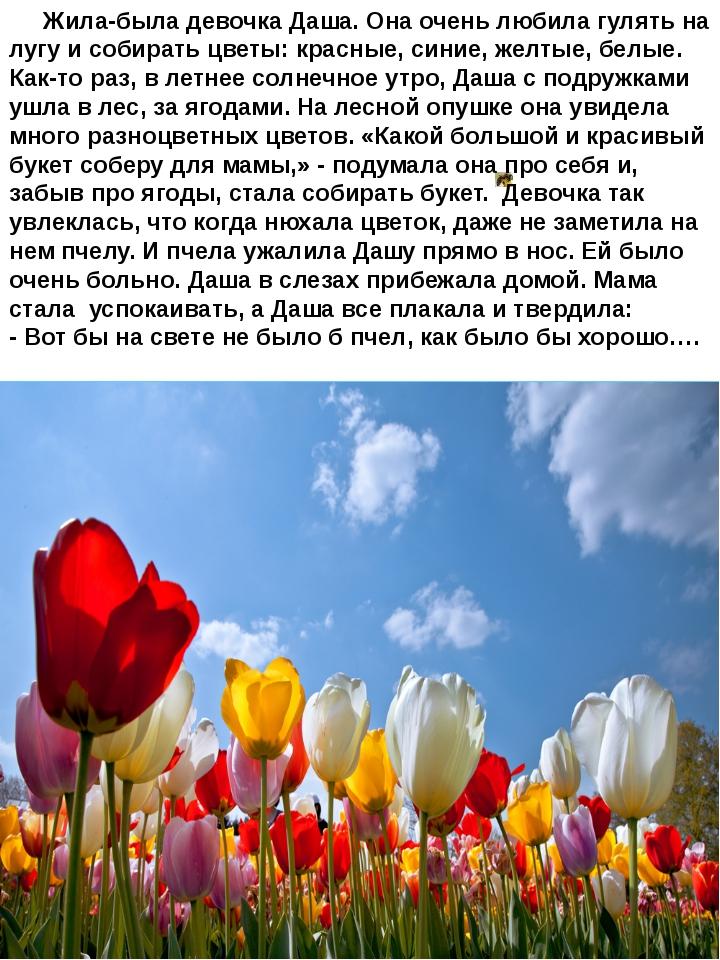 Жила-была девочка Даша. Она очень любила гулять на лугу и собирать цветы: кр...