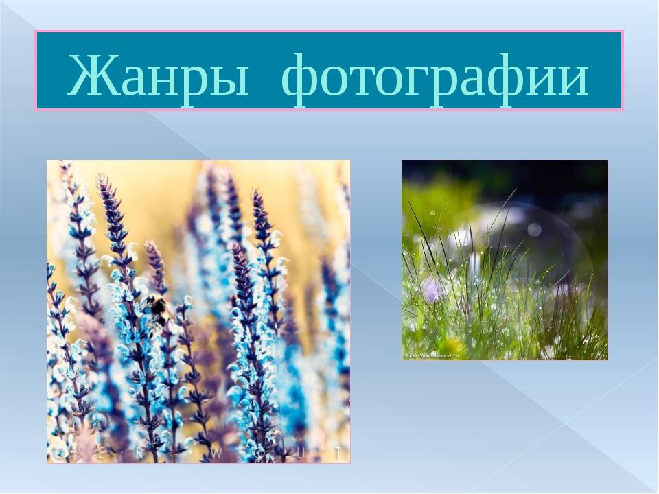 Жанры фотографии