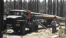 Лесовоз ЛТ-25