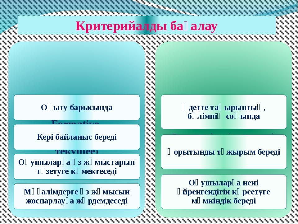 Критерийалды бағалау