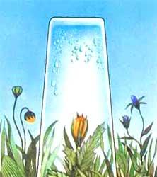 Опыт с запотеванием стенок стакана изнутри