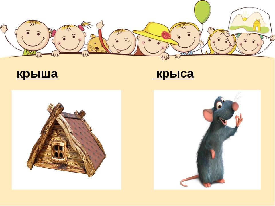 Пожеланиями, картинки крыса крыша