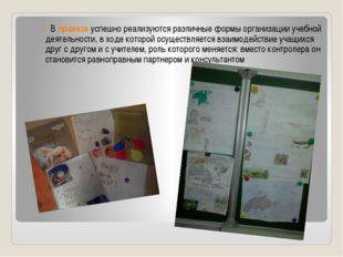 В проекте успешно реализуются различные формы организации учебной деятельност