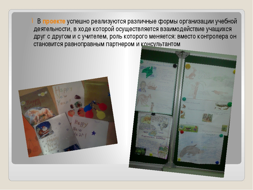 В проекте успешно реализуются различные формы организации учебной деятельност...