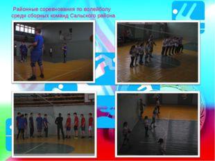Районные соревнования по волейболу среди сборных команд Сальского района