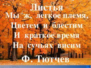 Мы ж, легкое племя, Цветем и блестим И краткое время На сучьях висим Листья
