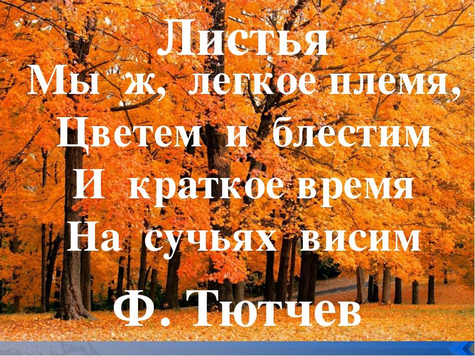 Мы ж, легкое племя, Цветем и блестим И краткое время На сучьях висим Листья...