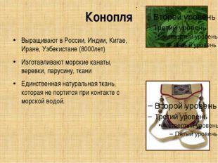 Конопля Выращивают в России, Индии, Китае, Иране, Узбекистане (8000лет) Изгот