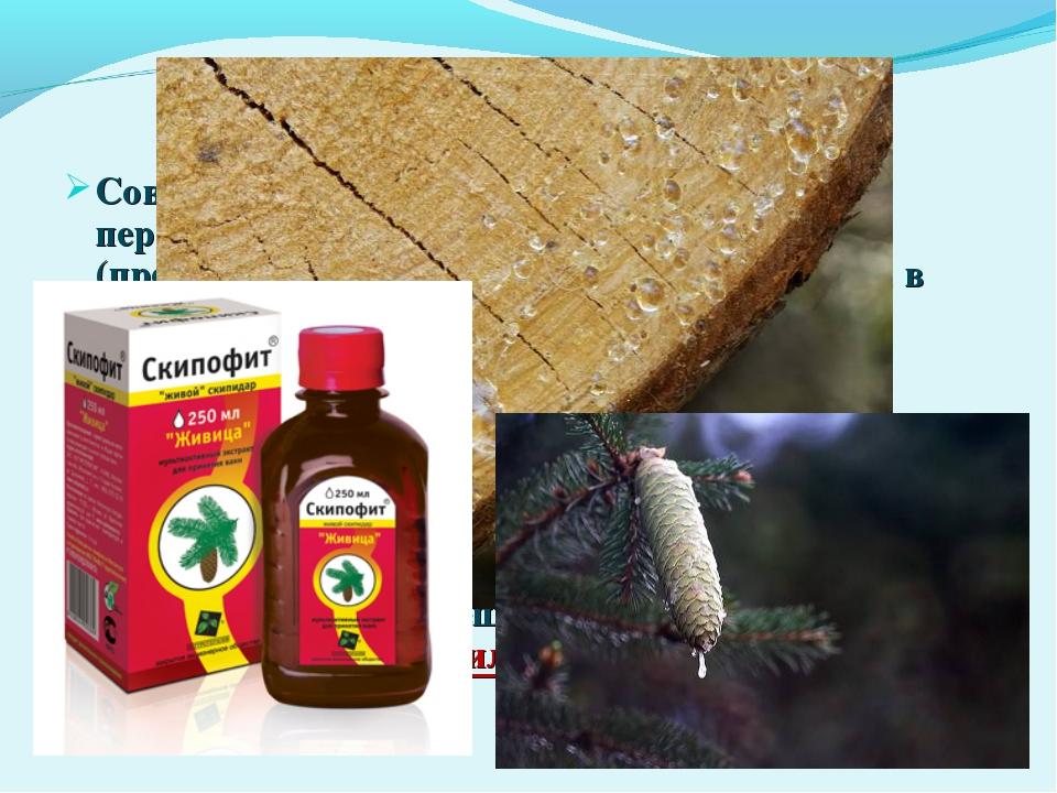 Состав Современная жевательная резинка состоит в первую очередь из жевательн...