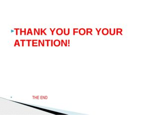 THANK YOU FOR YOUR ATTENTION! THE END