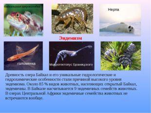 Древность озера Байкал и его уникальные гидрологические и гидрохимические осо