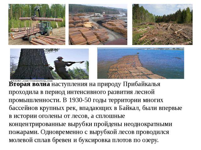 Вторая волна наступления на природу Прибайкалья проходила в период интенсивно...