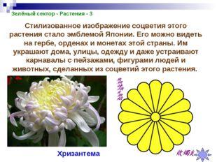 Зелёный сектор - Растения - 3 Стилизованное изображение соцветия этого растен