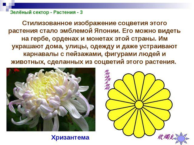 Зелёный сектор - Растения - 3 Стилизованное изображение соцветия этого растен...