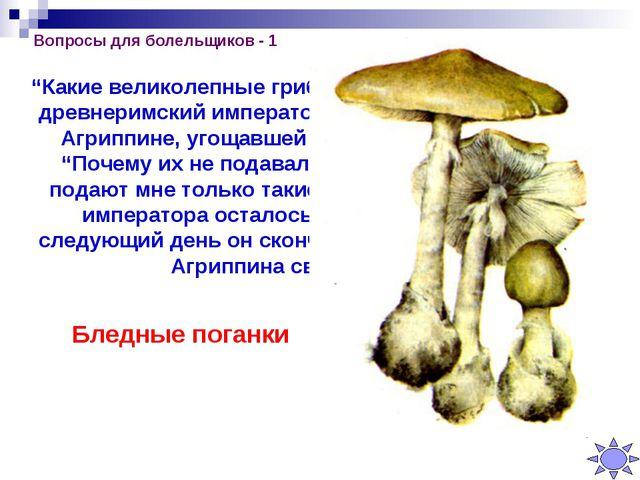 """Вопросы для болельщиков - 1 """"Какие великолепные грибы!"""" – восхищённо сказал д..."""